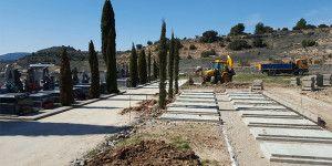 Plantación de árboles en Pareja.
