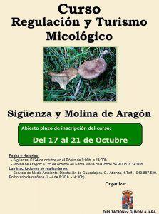 cartel-curso-regulacion-y-turismo-micologico