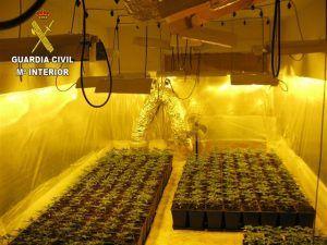 La Guardia Civil detiene a tres personas en El Casar por cultivar marihuana
