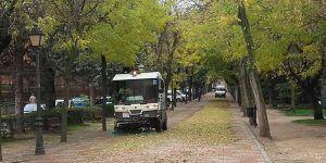 El Ayuntamiento de Guadalajara intensifica las labores para la retirada de las hojas de los árboles
