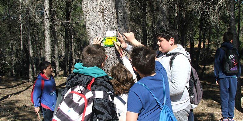 """""""Cuenca, deporte y naturaleza"""" elige Buendía para continuar acercando a los escolares de la provincia al senderismo"""