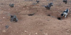 ASAJA no puede más y convoca concentraciones de tractores por toda Castilla-La Mancha