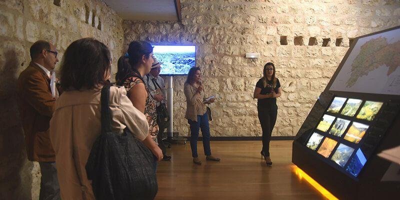 Aumentan cerca de un 12% los visitantes al castillo de Torija en el primer trimestre del año