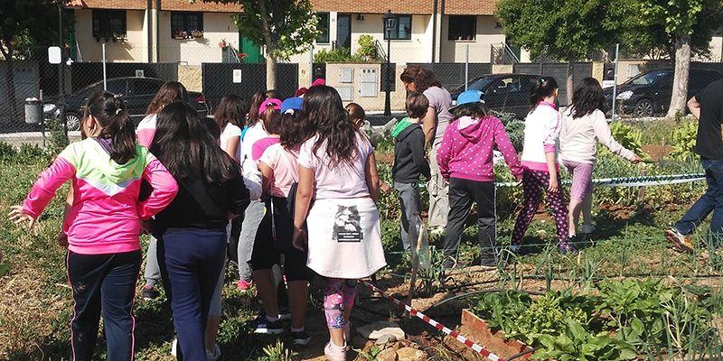 Alumnos de los colegios de Alovera visitan los huertos de la escuela agroecológica
