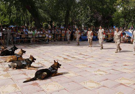El Jefe de la Unidad Militar de Emergencias inaugura la exposición de material de Guadalajara con motivo del Día de las Fuerzas Armadas