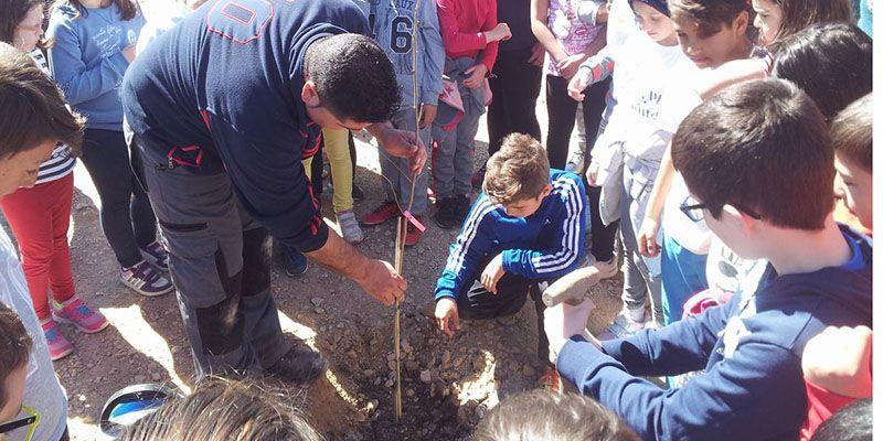 Los niños de Huete plantan de olmos un futuro jardín