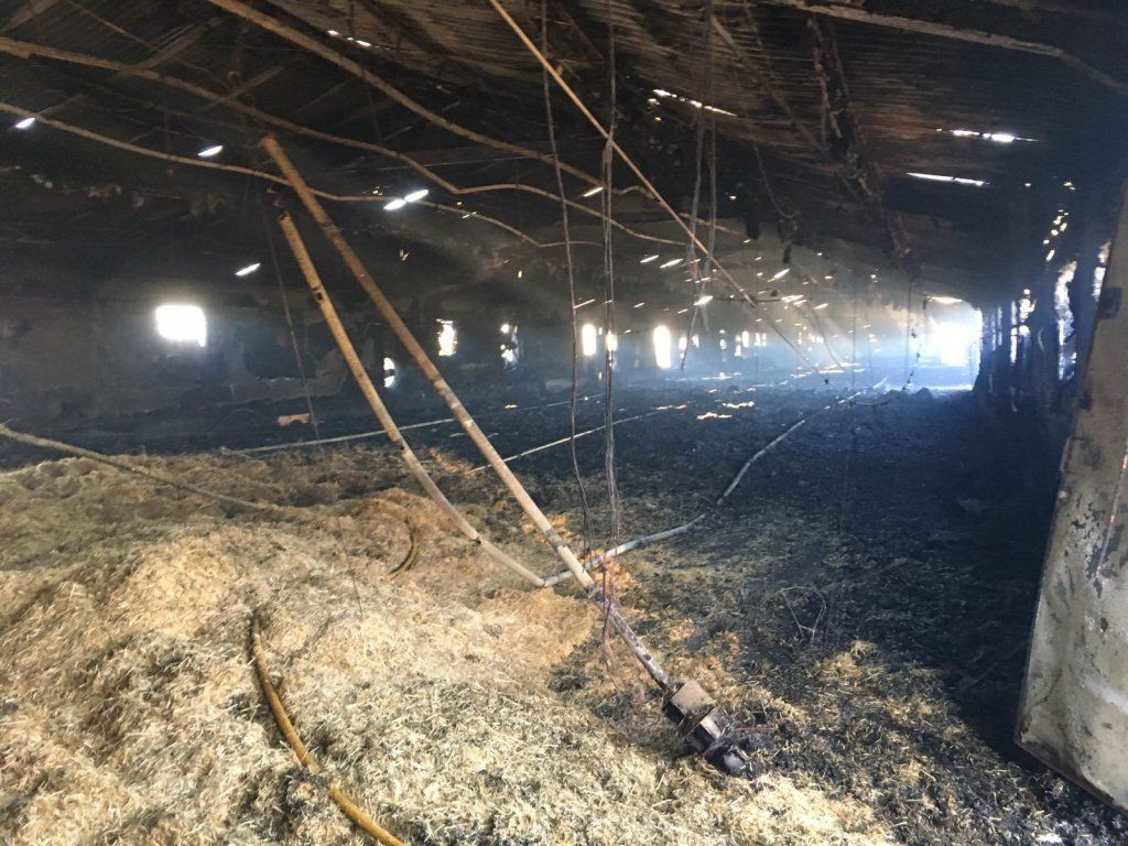 Arde una nave de pollos, vacía, en Villanueva de la Jara