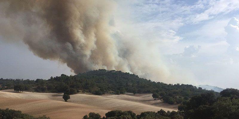 El fuego no para en Guadalajara Declarado un incendio forestal en El Recuenco