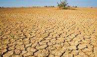 Globalcaja habilita líneas de financiación ante las últimas adversidades climáticas en la región