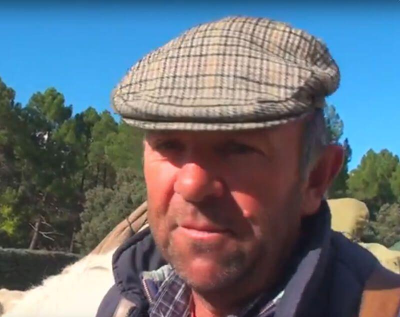 Trashumancia. Manuel Cardo, que traslada las ovejas en camiones por falta de agua, define en este vídeo lo que es la vereda. | Liberal de Castilla