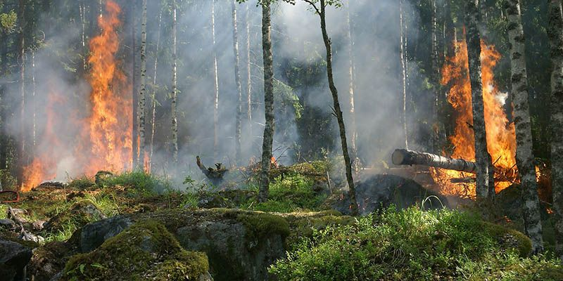 Unión de Uniones recuerda que la prevención de incendios es responsabilidad de todos
