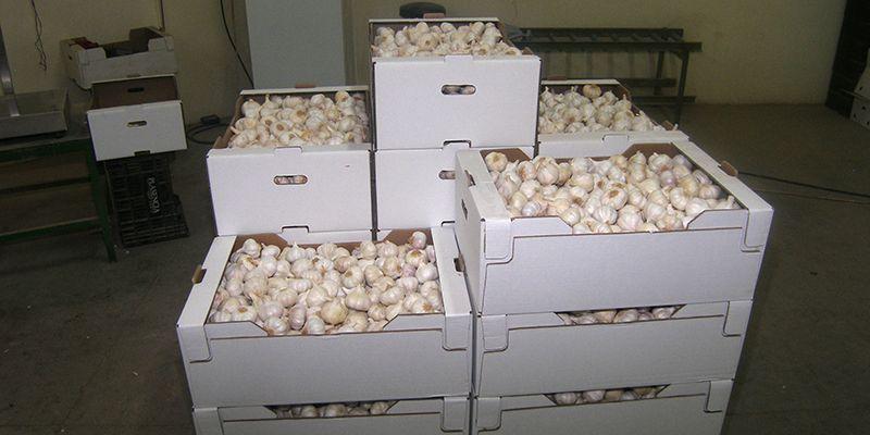 Las exportaciones aumentan en Cuenca por encima del 20% en los cuatro primeros meses del año