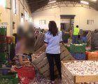 Guardia Civil y Policía de Rumanía auxilian en Cuenca a 59 trabajadores en condiciones precarias durante la recolección del ajo