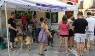 Los voluntarios del Albergue Provincial de Animales de Cuenca defienden la actual gestión