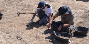 Acaba la campaña de excavaciones 2017 en Segóbriga, centrada en la exhumación de varios monumentos funerario
