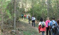 Cerca de 60 participantes disfrutaron de La Serranía en el regreso en otoño del Campus Diputación de Cuenca de Senderismo