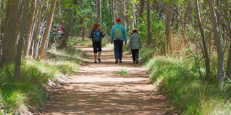 La Junta programa rutas interpretadas en los parques naturales de Guadalajara durante el mes de septiembre