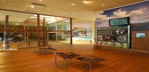 El Gobierno regional ofrece a los centros educativos visitas guiadas para conocer los espacios naturales de la provincia de Guadalajara