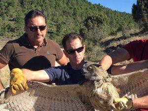El Centro de Recuperación de la Fauna Silvestre de Albaladejito, protagonista del programa 'Héroes Anónimos' de CMM