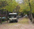 El Ayuntamiento de Guadalajara intensifica las labores de retirada de hojas y ramas