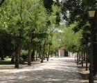 Incidencias en Guadalajara provocadas por los fuertes vientos
