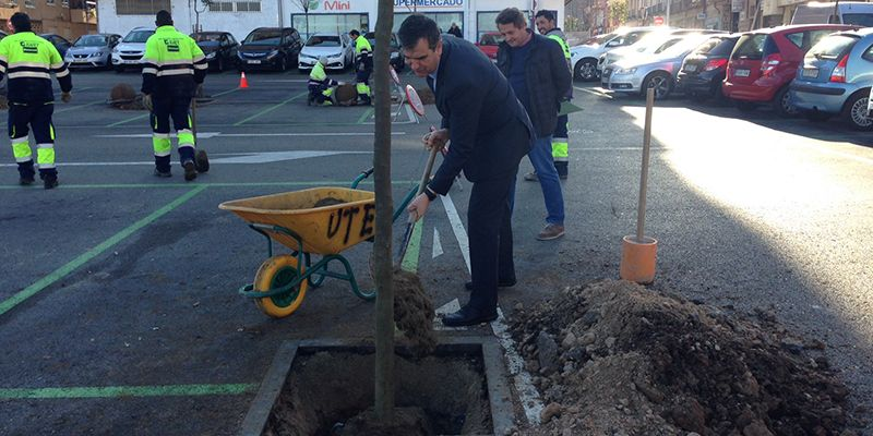 El Ayuntamiento de Guadalajara plantará 1.200 árboles en la ciudad a lo largo de este año