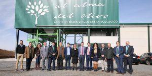 La Junta impulsa el olivar ecológico a través de inversiones en almazaras dentro de las ayudas a la industria agroalimentaria