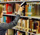 Yebes convoca el Plan Local de Empleo 2017 para dos plazas de peón y una de ayudante de biblioteca