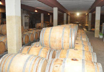 Las exportaciones en la provincia de Cuenca crecen por encima del 10%