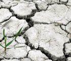 Unión de Uniones pide una Ley de Cambio Climático que cuente con los agricultores y ganaderos