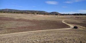 ASAJA CLM considera que se castiga nuevamente a los agricultores castellano-manchegos