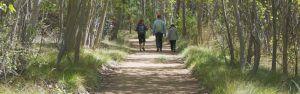 Castilla-La Mancha lanza una serie de recomendaciones a la ciudadanía durante la época de peligro medio por incendio forestal en Semana Santa