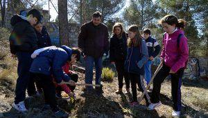 Más de un centenar de personas se suman a la celebración del Día Forestal Mundial plantando árboles en el Bosque de José Luis San Pedro