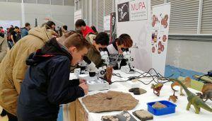 El Museo de las Ciencias y el Museo de Paleontología de Castilla-La Mancha concluyen una intensa semana de actividades con un gran éxito