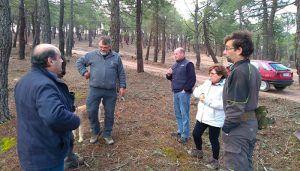 La Diputación de Guadalajara prepara una nueva orden de subvenciones para ayudar a los resineros