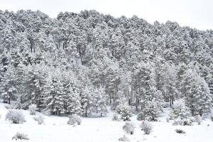 Una máquina quitanieves queda atascada en una carretera de Cuenca capital a causa de la nieve