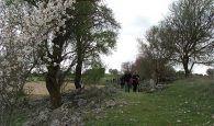 Una treintena de senderistas estuvieron en Horcajo de Santiago en una nueva actividad del Campus Diputación de Senderismo