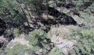Cs Cuenca insta a Mariscal a destinar más recursos para retirar los árboles caídos en el término municipal por las nevadas