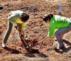 El bosque de Valdenazar necesita voluntarios para arrancar este jueves las plantas invasoras de ailanto