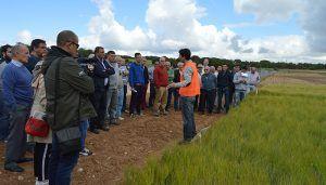 """La Junta destaca el """"importante servicio público"""" que prestan los centros de investigación como Albaladejito a los agricultores"""