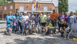La MVH y Aspropegu informan del trabajo contra el abandono y por la recuperación de los animales abandonados por el Corredor
