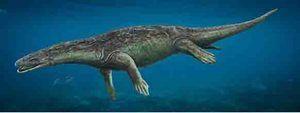 Investigadores de la UNED descubren un nuevo reptil marino que vivió en la actual Guadalajara hace 230 millones de años