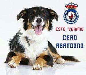 La RFEC inicia la campaña #CeroAbandono