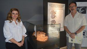 """""""Foxemys mechinorum"""", nuevo fósil del mes en el Museo de Paleontología de CLM"""