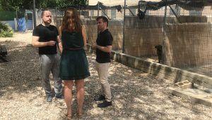 Cs Guadalajara pide una mayor concienciación para reducir las cifras de abandono de animales