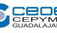 El departamento de Medio Ambiente y Calidad de CEOE-CEPYME Guadalajara asesora a 114 empresas durante el primer semestre del año