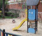 El PSOE en el Ayuntamiento de Cuenca insta al alcalde a cumplir la moción aprobada en Pleno y acondicionar las zonas infantiles