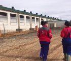 ASAJA Cuenca denuncia una campaña de acoso y desprestigio contra los ganaderos de porcino
