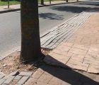 El Ayuntamiento de Cabanillas someterá a una consulta popular entre los vecinos el arreglo de las aceras del Mirador