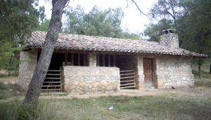 El Campus Diputación de Cuenca de Senderismo inicia este sábado su temporada de otoño en Castillejo de la Sierra